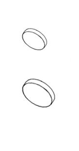 CAP1.1 / CAP1.2